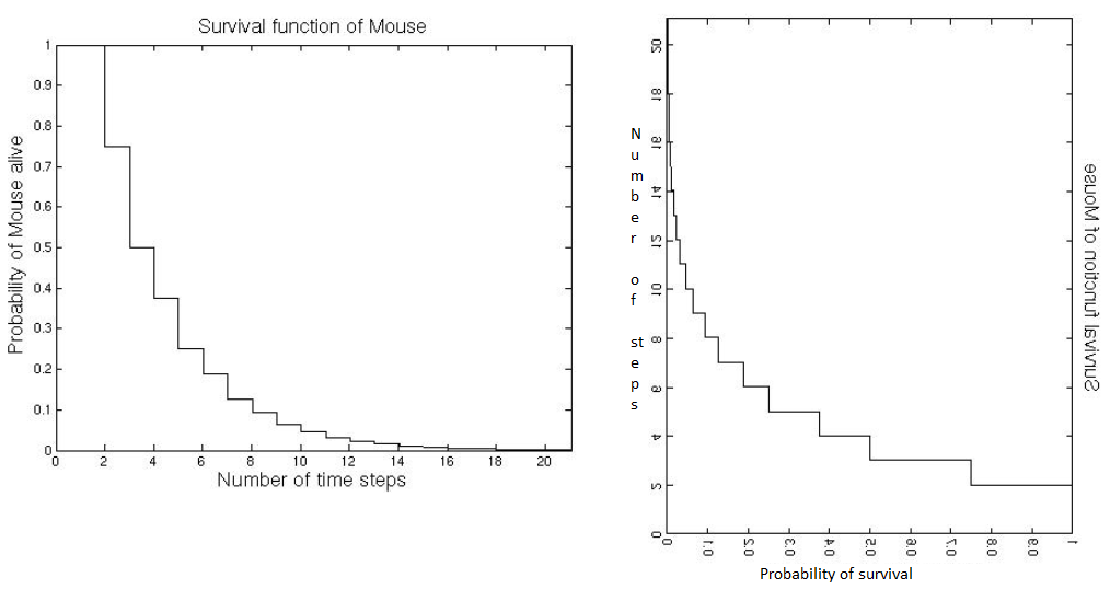 Cat Mouse Example Survival Function
